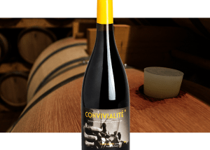 Château Camplazens - Convivialité - I.G.P. COTEAUX DE NARBONNE